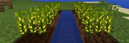 Текстуры Corn Economy Resource Pack 1.0.0 (0.16.0, 0.17.0)