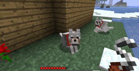 Мод Sophisticated Wolves на Майнкрафт 1.10 на мобов