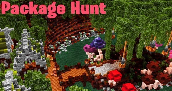 Карта SG Package Hunt 1 [Мини-игра] 1.7